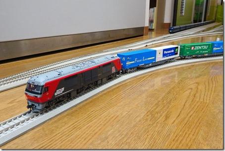 DSC00158 (2)