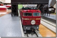 DSC00254 (2)
