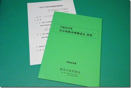 DSC03050 (2)
