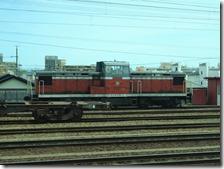 DSC03836 (2)