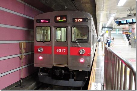 DSC02508 (2)