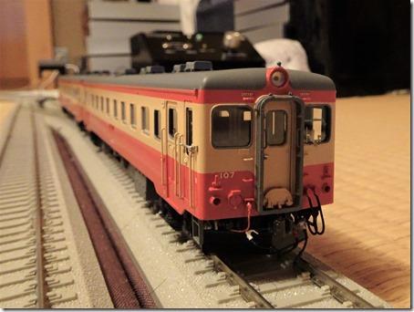 DSC07772 (2)