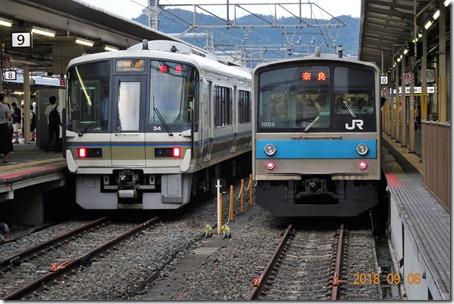 DSC09115 (2)