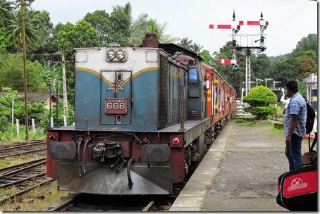 DSC08419 (2)
