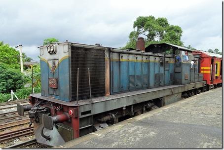 DSC08430 (2)