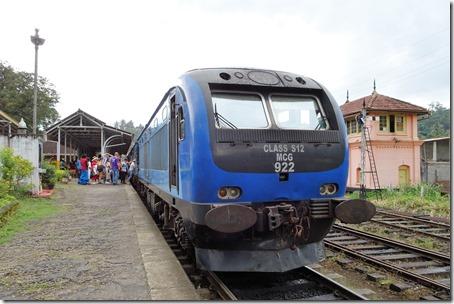 DSC08446 (2)