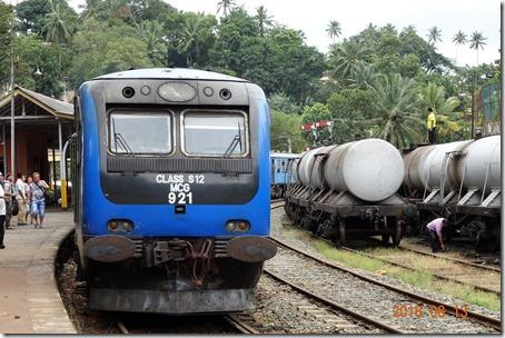 DSC08470 (2)