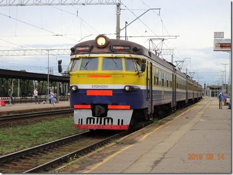 DSC06391 (2)