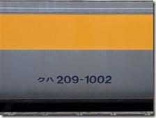 DSC08494 (2)