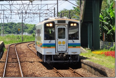 DSC01166 (2)