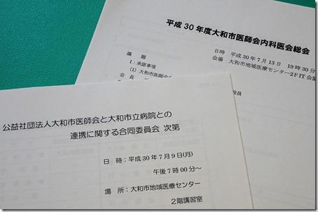 DSC07333 (2)