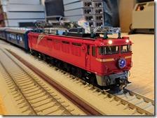 DSC09866 (2)