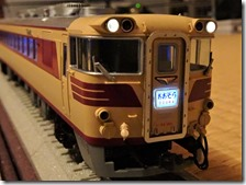 DSC09937 (2)