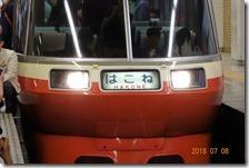 DSC07300 (2)