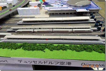 DSC08755 (2)