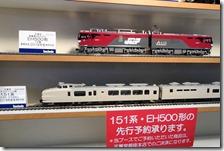 DSC08785 (2)