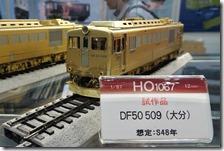 DSC08795 (2)