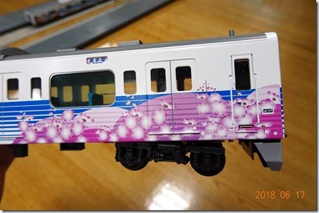 DSC06936 (2)
