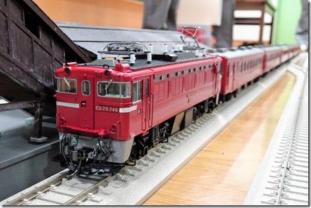 DSC06987 (3)