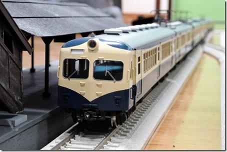 DSC06999 (3)