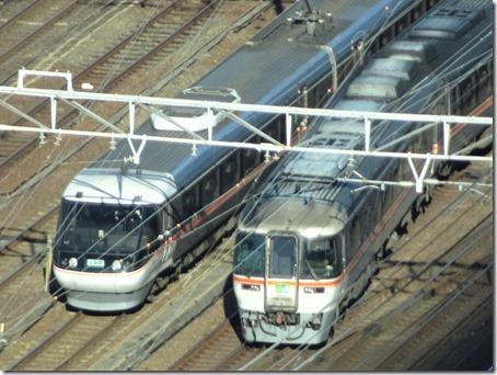 DSC09827 (2)