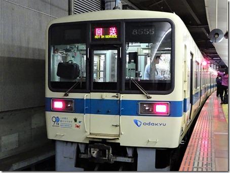 DSC08197 (2)