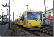 DSC03504 (2)