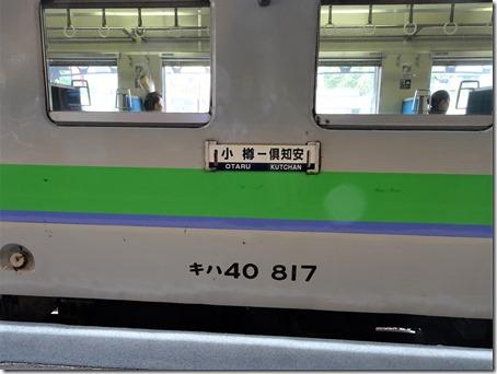 DSC07291 (2)