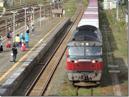 DSC07400 (2)