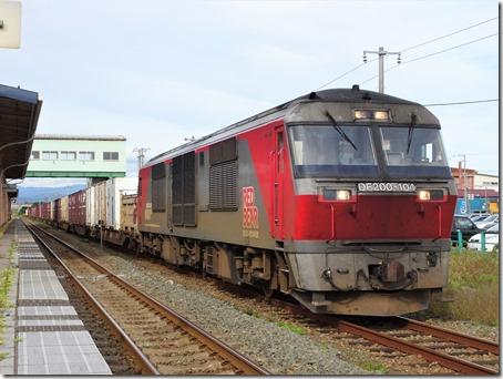 DSC07411 (2)