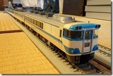 DSC09727 (2)