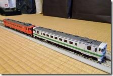 DSC09755 (2)